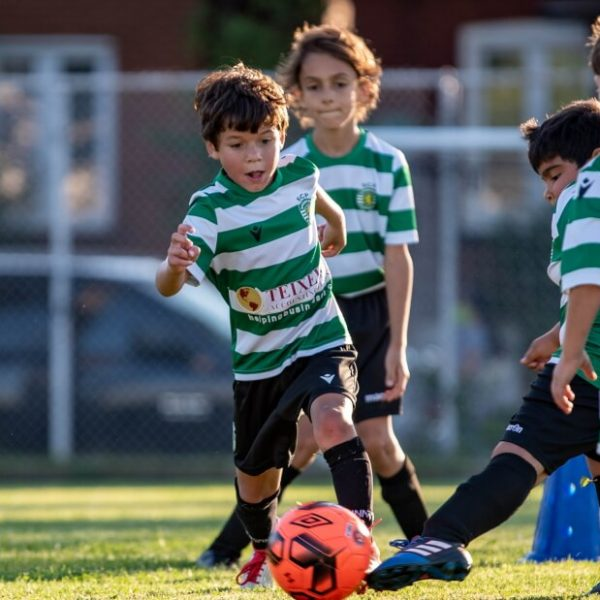 Sporting FC Toronto - summer camp1